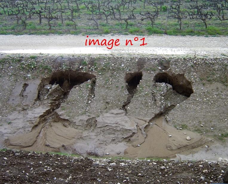 février 2016 ravinement des berges  du fossé de colature