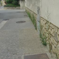 herbes rue pont