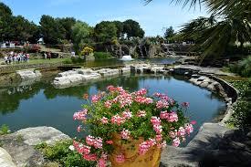 végétation luxuriante, fleurs ...